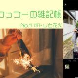 つっつーの雑記帳、はじめました。「iPhone11に変えて一週間、カメラにびっくり」の巻