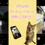 iPhoneでボケ味を楽しむ写真を撮ろう!奥深い「ポートレートモード」のすべて