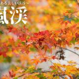 【紅葉撮影】愛知・香嵐渓は400年続く美しい渓谷!【作例紹介】