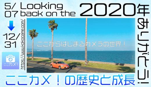 【今年もありがとう!】お気に入りの記事と、ここカメ!の歴史2020~サイト設立からSEOとアクセス数増加への道のり~