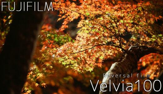 超高彩度ポジフィルム「Velvia100」作例・レビュー